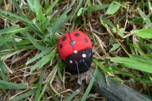 Lady Bug Geocaching Containers