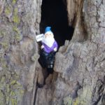 gnome purple geocache