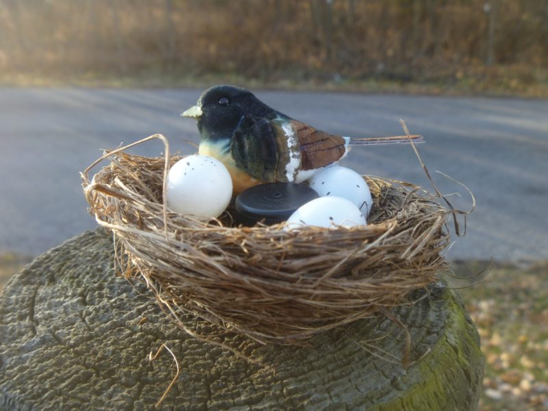 Bird Nest Geocache Container