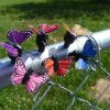 Butterfly Cache Containers