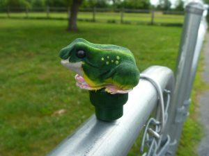 Frog Geocaching Container