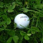Golf Ball Geocache Container