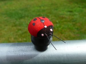 Lady Bug Geocaching Container