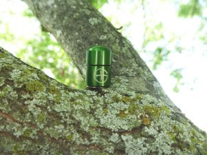 Tiny Bison Tube Geocache Container